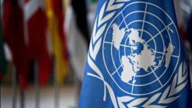 Photo of ONU pide investigar episodios de violencia policial en EE.UU