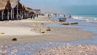 Photo of México: Cierre de playas en Sonora acarreará pérdidas millonarias