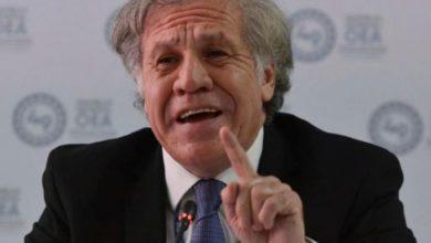 Photo of Almagro exigió al régimen información de presos políticos contagiados por COVID-19