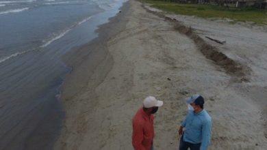 Photo of En Falcón ambientalistas limpian manglares por derrames de petróleo